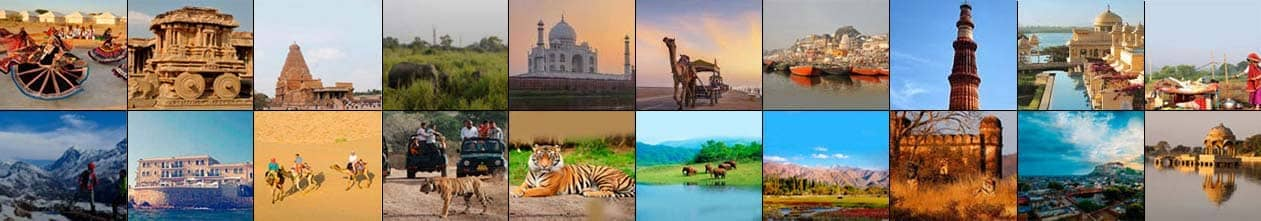 Solo Travel Packages India