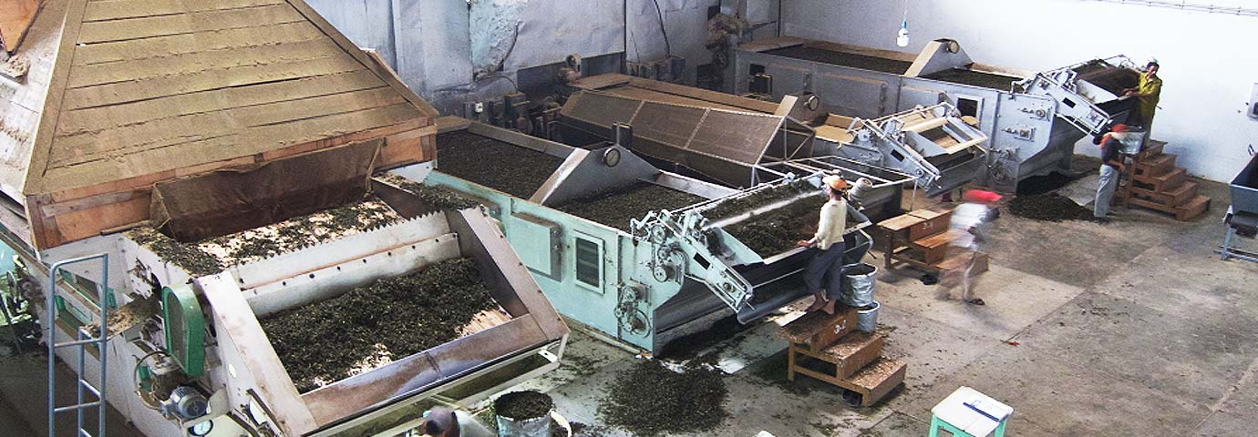 Palampur Cooperative Tea Factory